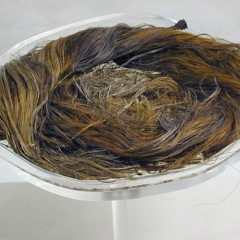 Preserved Roman Hair - Yorkshire Museum