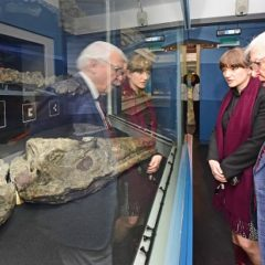 Man and woman look through glass museum case at natural science exhibit